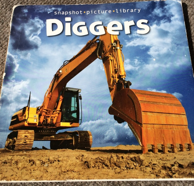 A Photo of My Purchase of Diggers for Reverie of a Picture Book