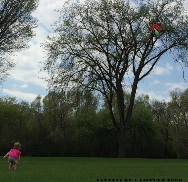Fly A Kite in North Dakota for Reverie of a Picture Book